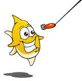 Рыбы гоня приманку на изолированной белизне Стоковое Фото