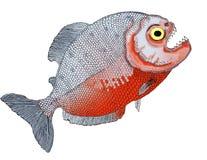 Рыбы животных реки тропического леса Piranha с зубами Стоковое фото RF