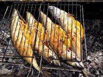 Рыбы зажаренные на гриле угля Стоковые Фотографии RF