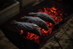 Рыбы зажаренные на накаленном докрасна угле стоковое изображение