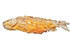 рыбы зажарили изолировано Зажаренное crucian на белой предпосылке Рыбы реки Стоковая Фотография