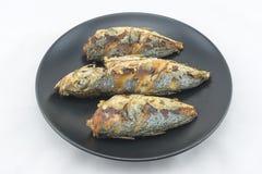 рыбы зажарили Стоковое Фото