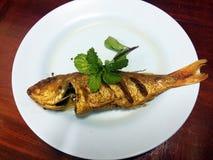 рыбы зажарили Стоковая Фотография RF