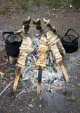 рыбы зажгли вертел Стоковые Изображения RF