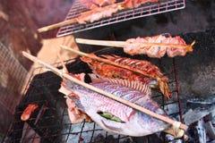 рыбы зажгли Стоковое Изображение RF