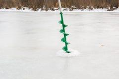 Рыбы задвижек в зиме Стоковые Изображения RF