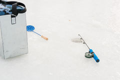 Рыбы задвижек в зиме Стоковое Фото
