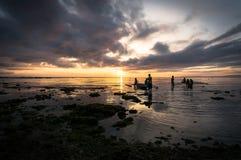 Рыбы задвижки рыболовов на зоре Стоковая Фотография