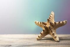 Рыбы звезды Стоковые Изображения RF