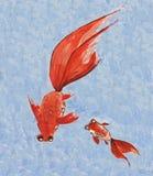 рыбы золота картины акварели Стоковое Изображение