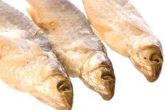 рыбы изолировали посолено стоковое изображение