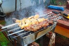 Рыбы и мясо Стоковая Фотография