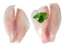 Рыбы и мята стоковая фотография rf
