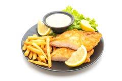 рыбы и обломоки стоковые фото