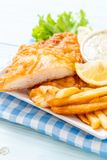рыбы и обломоки стоковые изображения