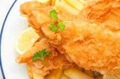 Рыбы и обломоки Стоковая Фотография