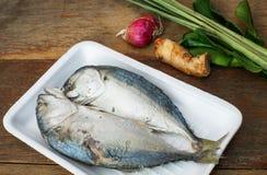 Рыбы и трава скумбрии Стоковое Изображение