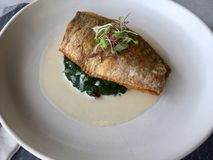 Рыбы и шпинат Кухня лакомки Стоковая Фотография