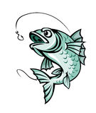 Рыбы карпа Стоковое Изображение RF