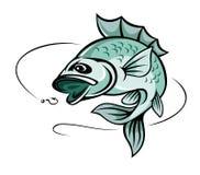 Рыбы карпа Стоковые Изображения