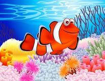 рыбы клоуна Стоковая Фотография RF