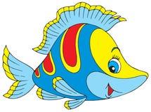 Рыбы коралла
