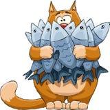 рыбы кота
