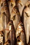Рыбы, который нужно продать стоковое изображение rf