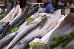 Рыбы, который подвергли действию в рынок Стоковые Фотографии RF