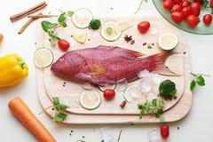Рыбы морского окуня с ингридиентами стоковая фотография