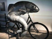 Рыбы на велосипеде стоковое изображение