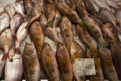 Рыбы на плите, dos Lavradores Mercado, Фуншал стоковые изображения