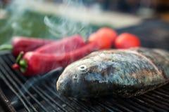Рыбы на решетке Стоковые Фотографии RF