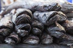 Рыбы на рынке свежих продуктов стоковые изображения