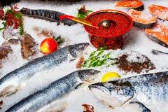Рыбы на льде Стоковые Изображения