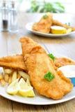 рыбы обломоков стоковое изображение rf