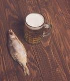 Рыбы, пиво Стоковое Фото