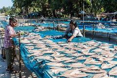 Рыбы пляжа Ngapali суша Мьянму Стоковая Фотография