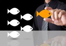 Рыбы показывая успех индивидуальности руководителя Стоковые Фото