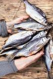 Рыбы посоленные пуком Стоковое Фото