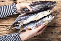 Рыбы посоленные пуком Стоковая Фотография