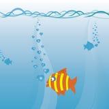 рыбы предпосылки любят вектор Стоковое фото RF