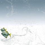 рыбы предпосылки ясные немногая 2 воды Стоковое Изображение RF