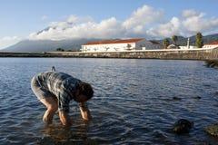 рыбы приманки заразительные Стоковое Фото