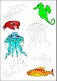 рыбы расцветки книги иллюстрация вектора