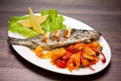 Рыбы радужной форели Стоковые Изображения RF