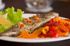 Рыбы радужной форели Стоковые Фото