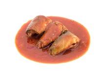 Рыбы сардин в томатном соусе Стоковое фото RF