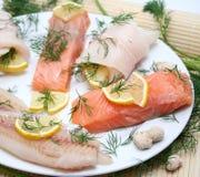 рыбы свежие Стоковое Фото