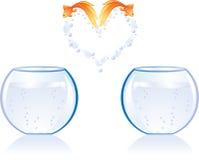 рыбы скачут влюбленность Стоковые Изображения
